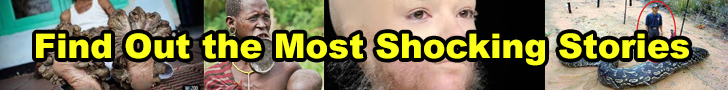 BigShocking.com